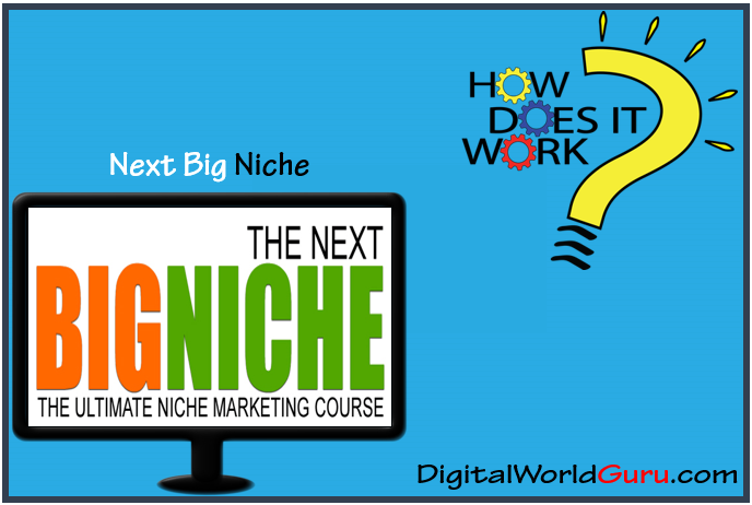 how next big niche works