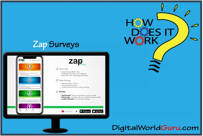 how zap surveys works