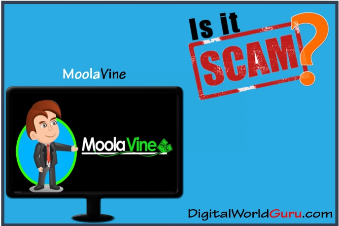 Is MoolaVine Scam
